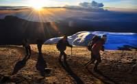 De Barranco Camp (3.901 m) a Barafu Camp (4.673  m).  Una ladera que enamora - Tanzania Gran Viaje Ascensión al Kilimanjaro: Ruta Machame