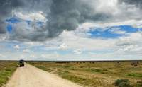 Nairobi – Cráter de Ngorongoro. ¡Rumbo a Tanzania! - Kenia Safari Safari Kenia y Tanzania: Ngorongoro