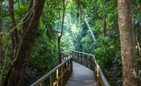 Bosque Nuboso de Monteverde - Manuel Antonio. Sol, playa y aguas cristalinas - Costa Rica Gran Viaje Costa Rica Express con Manuel Antonio