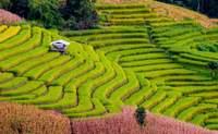 Hanói. ¡Hola Vietnam! - Vietnam Gran Viaje Esenciales de Vietnam y Camboya