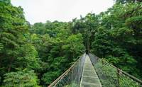 Volcán Arenal. Amanece a la sombra del volcán - Costa Rica Gran Viaje Costa Rica Indispensable y Guanacaste