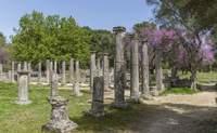 Olympia - Delfos. El origen de los Juegos Olímpicos - Grecia Circuito Atenas, Olimpia, Delfos y Kalambaka