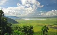 El Cráter del Ngorongoro. Un parque dentro de un antiguo volcán - Kenia Safari Safari Kenia y Tanzania: Ngorongoro