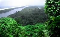 Parque Nacional Tortuguero. Contempla las mil caras de un completo ecosistema - Costa Rica Gran Viaje Costa Rica Indispensable y Guanacaste