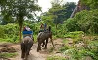 Chiang Mai – Mae Tang – Mujeres jirafa – Chiang Mai. El día en que los elefantes se convirtieron en protagonistas - Tailandia Gran Viaje Tailandia al completo
