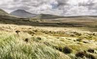 Condado de Galway. Visitando el Parque Nacional de Connemara - Irlanda Circuito Irlanda Fantástica y Sur
