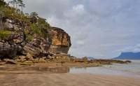 Kuching - Parque Nacional de Bako - Kuching. La naturaleza más salvaje de Borneo - Malasia Gran Viaje Kuala Lumpur y gran tour de Borneo