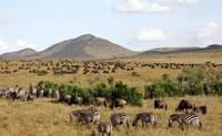 Lago Nakuru – Masái Mara. El parque más bello de Kenia - Kenia Safari Safari Kenia y Tanzania: Ngorongoro