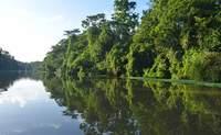 San Jose - Parque Nacional Tortuguero. Hacia una maravilla natural - Costa Rica Gran Viaje Costa Rica Indispensable y Guanacaste
