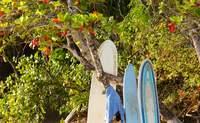Manuel Antonio. Playa y desconexión - Costa Rica Gran Viaje Costa Rica Indispensable y Manuel Antonio
