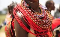 Masai Mara - Nairobi -España. ¡Feliz vuelta a casa! - Kenia Safari Safari en Kenia: Reserva Nacional Shaba