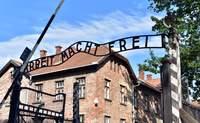 Cracovia- Auschwitz – Wroclaw. El horror de los campos de exterminio - Polonia Circuito Polonia, Lituania, Letonia y Estonia