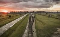 Auschwitz – Cracovia: donde la historia nos sacude - Polonia Circuito Gran Tour de Polonia (Varsovia - Cracovia)