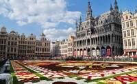 Bruselas - Rotterdam - La Haya - Ámsterdam. Explorando, palmo a palmo, los Países Bajos. - Francia Circuito París, Bruselas, Ámsterdam y Frankfurt