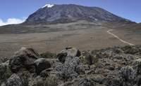 Moshi/Marangu - Mandara (De 1.800 a 2.700 m.). El libro de la selva - Tanzania Gran Viaje Ascensión al Kilimanjaro: Ruta Marangu